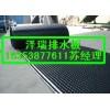 建筑车库专用排水板(天津)抗穿刺车库绿化排水板
